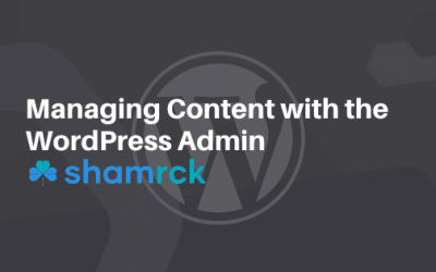 Managing Content with the WordPress Admin Panel