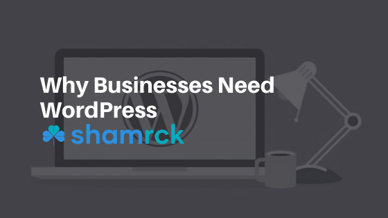 3 Reasons WordPress is Best for Businesses